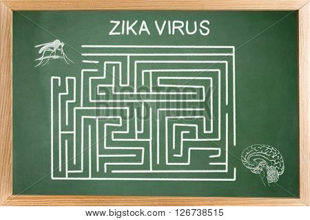 Conceptual diagram drawn with chalk on a Blackboard green of the Of Zica virus, Labyrinth without resolved
