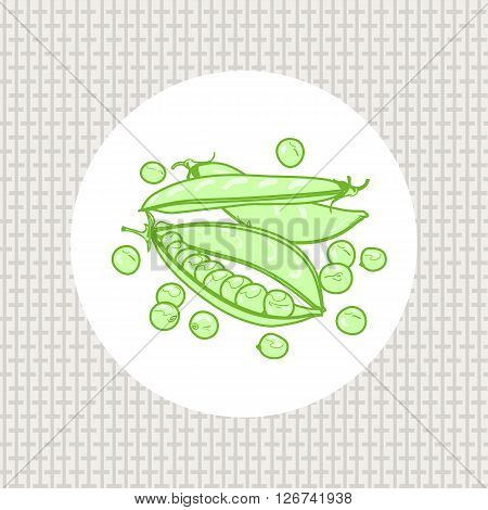 Pods and peas, seeds peas green. Vector illustration. Seamless pattern design canvas fabric in the vector. Vegetables on a white background. A handful of green peas song.