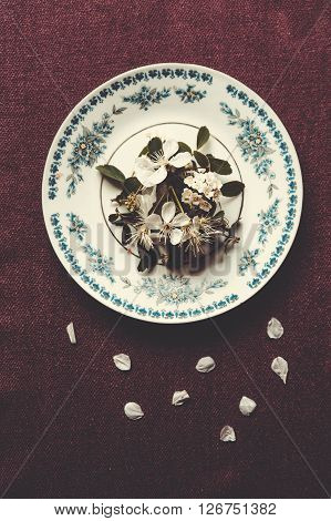 Plate with spring flowers and petals on a table. Top view
