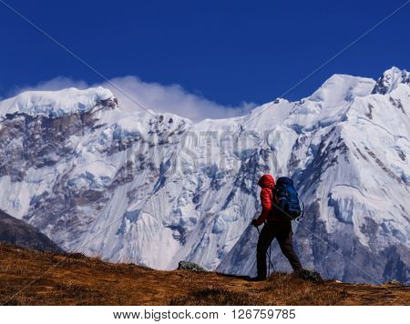 Hiker in Himalayas mountain. Nepal