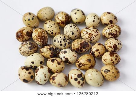 Several small motley quail eggs are located on a white background. Small depth of sharpness. Focus in the center.