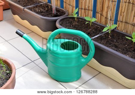 Green watering can and seedlings in flower boxes as a part of urban garden on the balcony