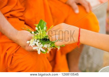 hand hold group of flowers for pay to buddha