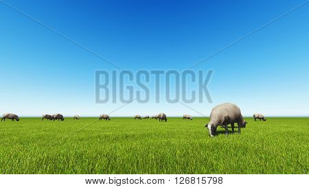 Beautiful landscape - hills covered by green grass with herds of sheep 3d rendering 1