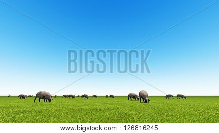 Beautiful landscape - hills covered by green grass with herds of sheep 3d rendering 5