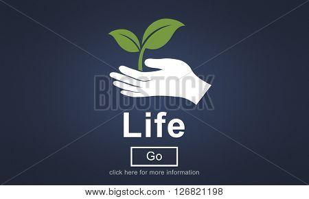 Life Balance Being Birth Breath Healthy Simple Concept