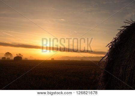 Warm sunrise over farmland