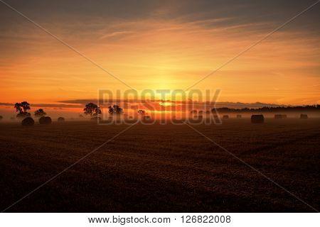 Farmland landscape at sunrise