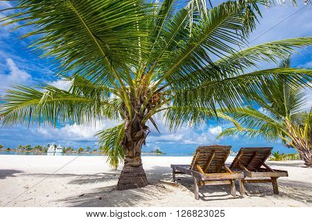 Tropical Island With Sandy Beach, Palm Trees And Tourquise Clear Water