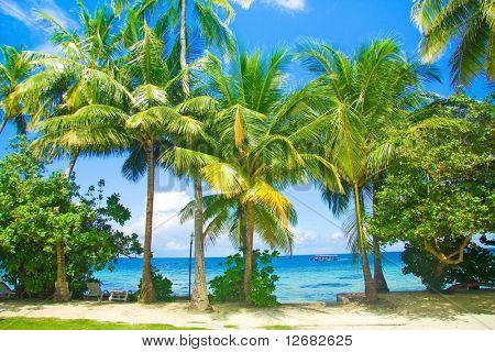 Maledivische trivial Ansicht