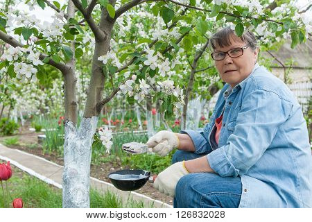 Woman Working In Her Garden
