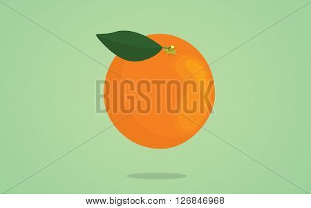 orange fruit with leaf on the top and green background vetor