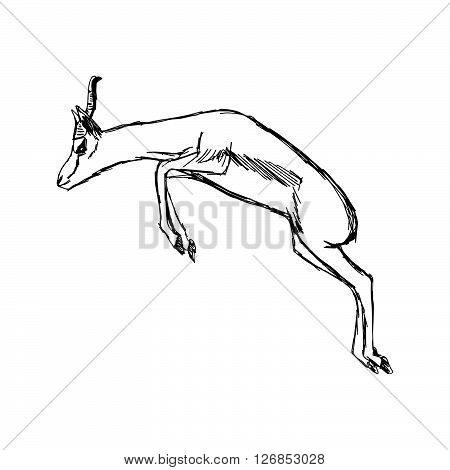 illustration vector hand draw doodles of gazelle jumping isolated on white background