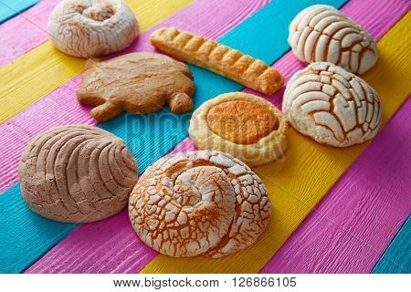 Mexican pastries concha puerquito ojo buey in a colorful wood background