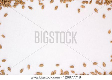 Frame From Sunflower Seeds