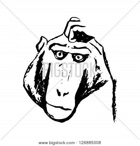 The graphic image of the monkey who thinks. Abstract pattern of black lines on a white background. Picture the emotions of the monkey the monkey head. Vector illustration
