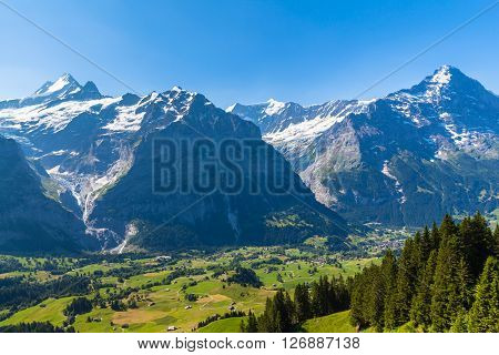 Panorama view of Schreckhorn Fiescherwand Eiger in summer from Grindelwald First on Bernese Oberland Switzerland