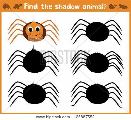 Cartoon vector illustration of education will find appropriate shadow silhouette animal spider. Matching game for children of preschool age. Vector.