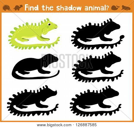 Cartoon vector illustration of education will find appropriate shadow silhouette animal iguana. Matching game for children of preschool age. Vector illustration