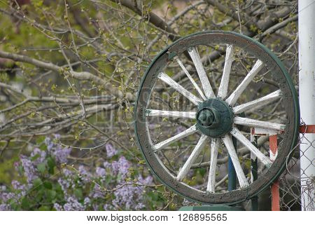 Horse cart wheel on the stand at garden