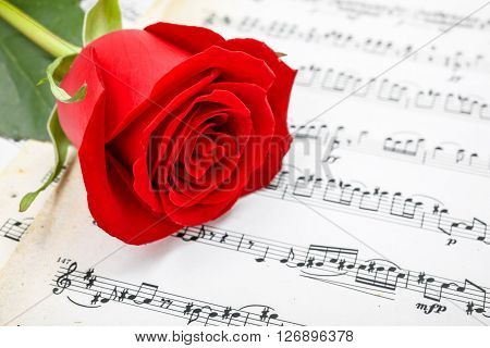 Red Rose On Musical Sheet