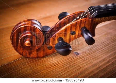 Close View Of Violin Scroll And Pegbox