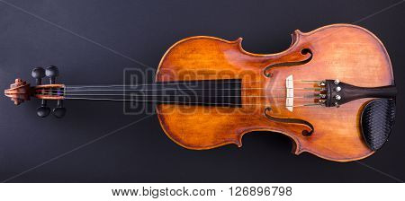 Front View Of A Brown Violin