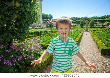 Cute Child, In The Gardens In Front Of The Villandry Castle On Loire