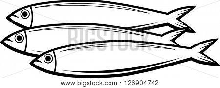 sardine fish