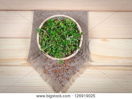 Fresh Radish Sprouts On A Wooden Background.