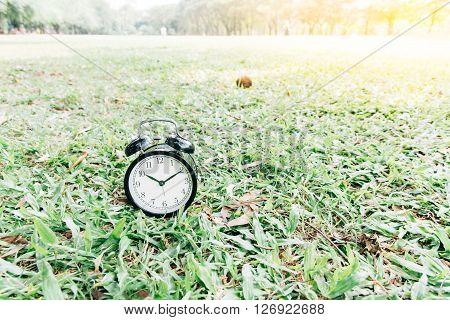 Black Alarm Clock On The Lawn