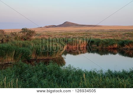 Lake oasis. The reeds and grasslands landscape. Baskunchak Bogdo summer evening