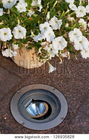 The built-in light in the granite sidewalk next to flower bed
