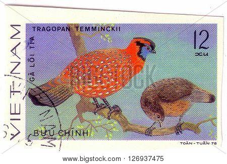 VIETNAM - CIRCA 1978 : A stamp printed by Vietnam shows bird from the series Ornamental bird circa 1978.