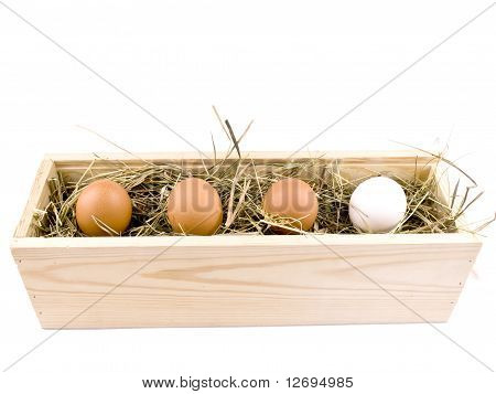 Four Eggs In Wooden Box