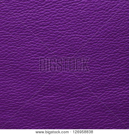 Fuchsia plum leather texture. Close up top view.