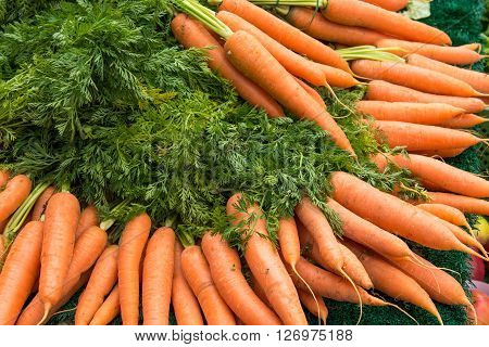Fresh carrots with green leaves for sale at a market