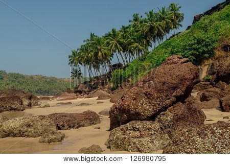 Rocks on hidden beach with palms near Agonda beach Goa state India