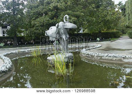 SOCHI RUSSIA - November 10 2015: The fountain Cranes in park Riviera. Sochi Russia