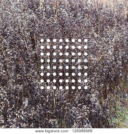 Dots of row on the grassy background. Abstraction sacred geometry.