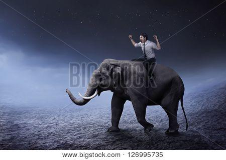 Asian business man riding elephant walking on the desert