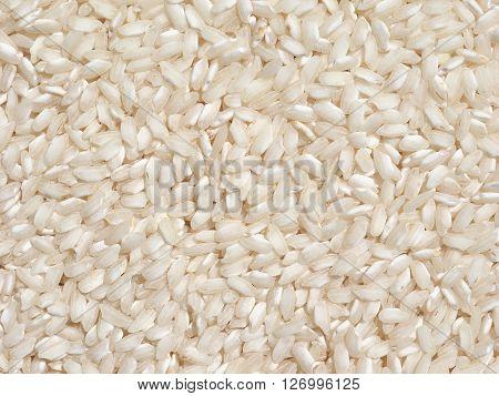 Carnaroli Rice Food