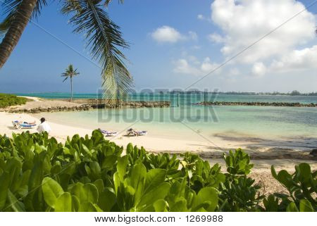 Resort Lagoon 2