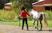 picture of horse riding  - young girl leading a white pony to stable - JPG