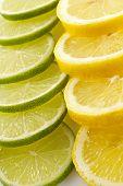 Постер, плакат: Цитрон ассорти лайм лимон