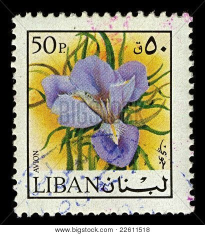 LEBANON-CIRCA 1973:A stamp printed in Lebanon shows image of Lilium is a genus of herbaceous flowering plants growing from bulbs, circa 1973.