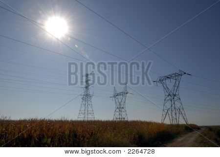 Electrical Towers And Corn
