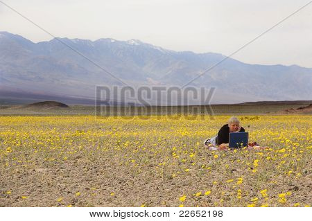 Botanist In Death Valley