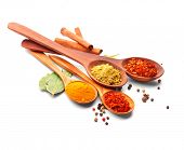 Spices. Spice in Wooden spoon. Herbs. Curry, Saffron, turmeric, cinnamon and other isolated on a whi poster