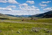 image of lamar  - Lamar Valley in Yellowstone National Park Wyoming - JPG